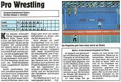 'Pro Wrestling Testbericht'